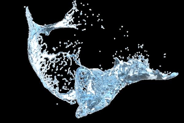 trio1 water1